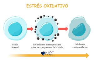 OZONOTERAPIA || ESTRÉS OXIDATIVO
