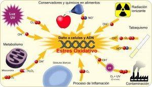 factores-que-incrementan-estres-oxidativo-ozonoterapia-valencia-ivot-300x171