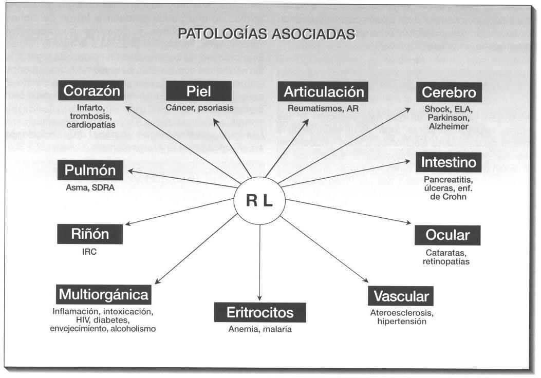 organos-afectados-por-radivales-libres-ozonoterapia-valencia